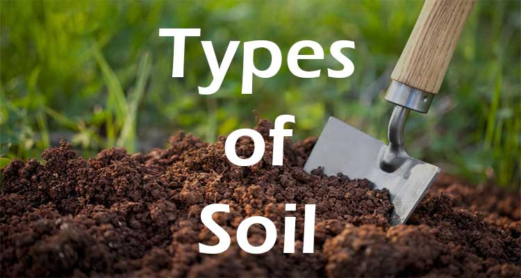 types-of-soils